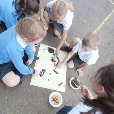 Stone Age painting – Y3