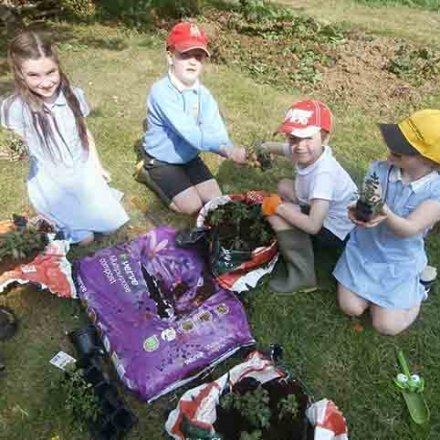 Gardening Club gets busy
