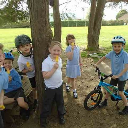 Behaviour reward bikes, scooters and lollies – Y2